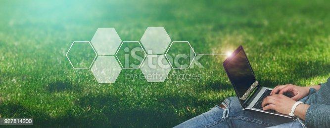 927814202 istock photo Honeycomb concept - empty 927814200