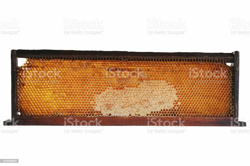 honeycomb frame royalty-free stock photo
