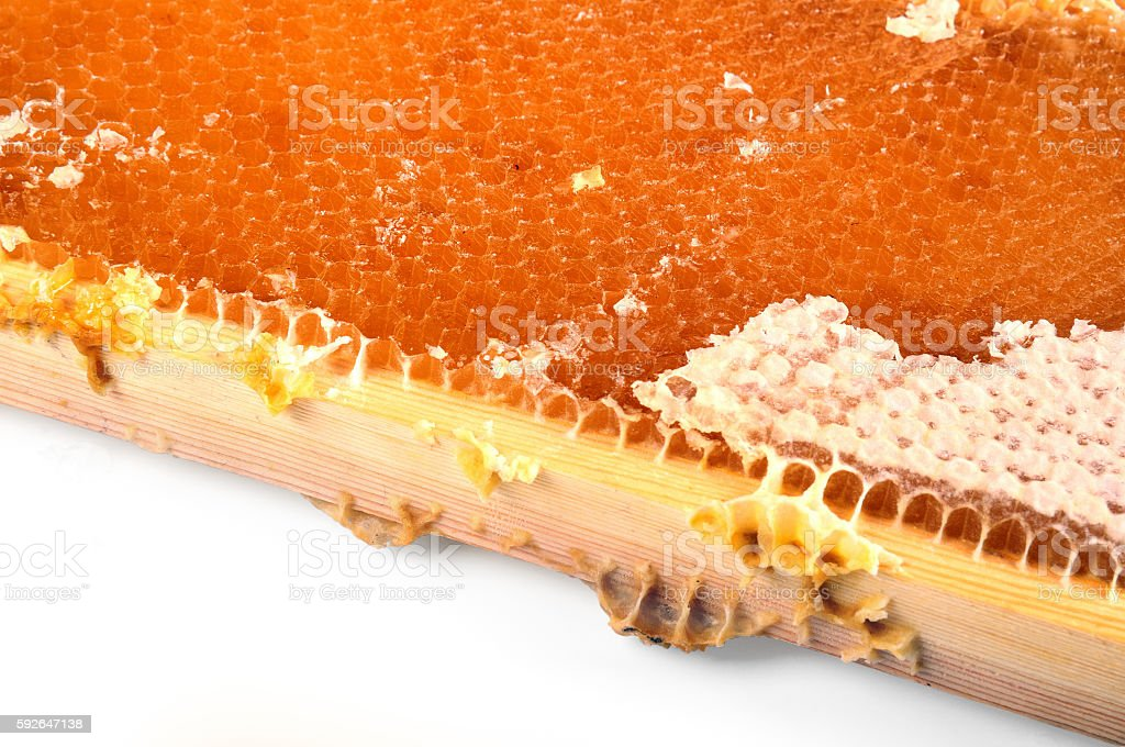 honeycomb honey in a wooden frame stock photo