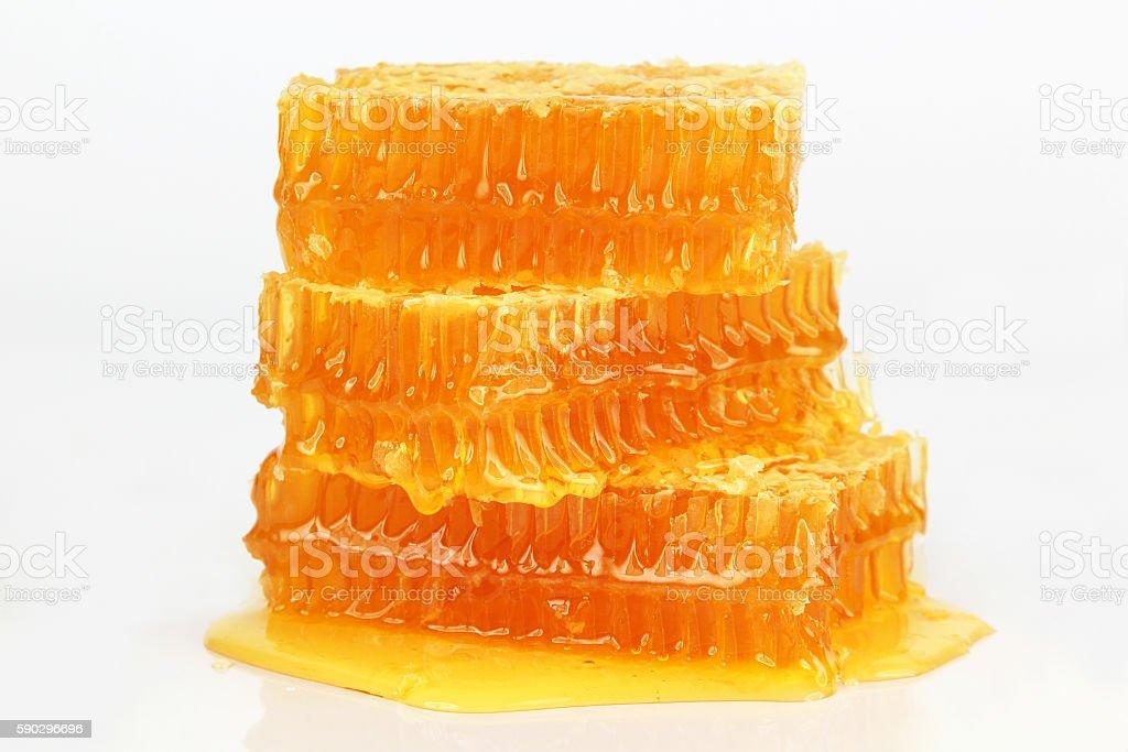 honeycomb on white background royaltyfri bildbanksbilder