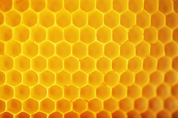 Honeycomb Patterns stock photo