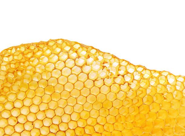 favo de mel - honeycomb imagens e fotografias de stock