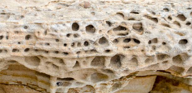 honeycomb weathering in sandstone stock photo