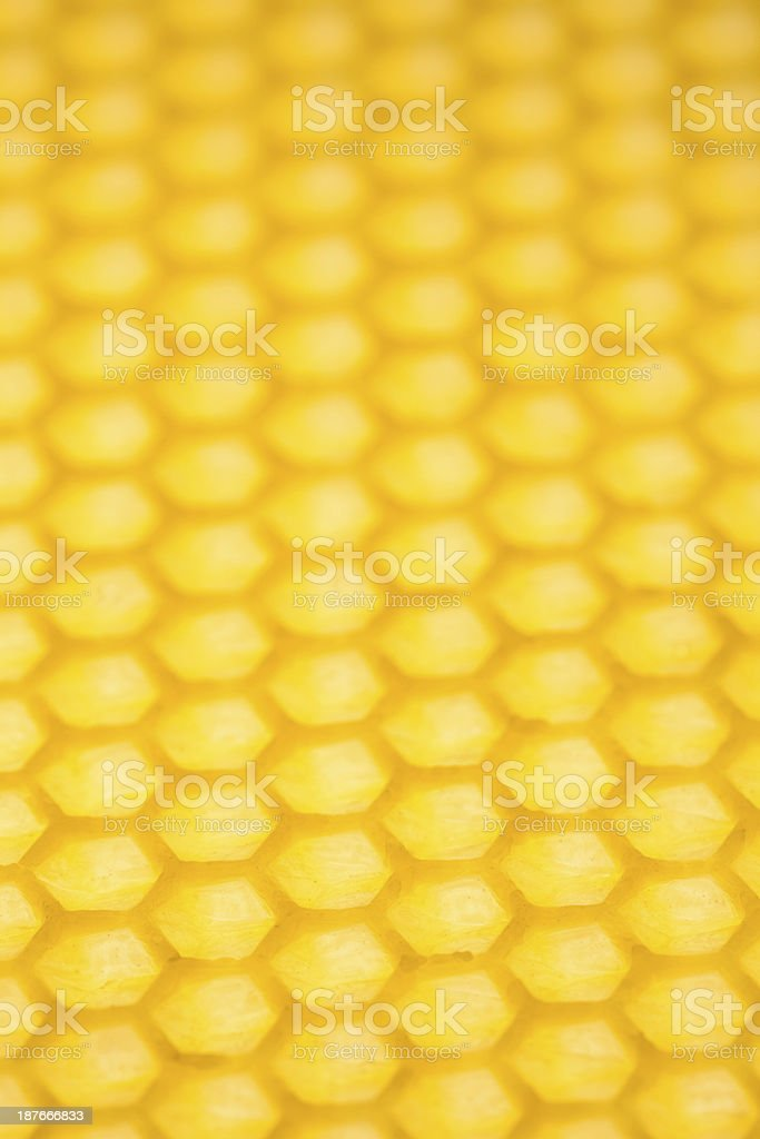 Honeycomb-close up royalty-free stock photo