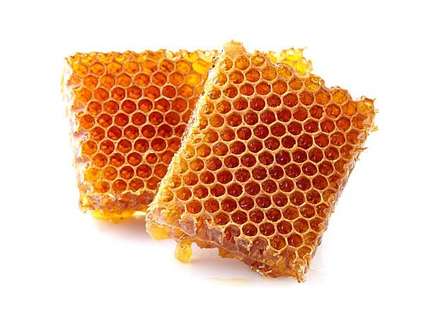 honeycombs - honeycomb imagens e fotografias de stock