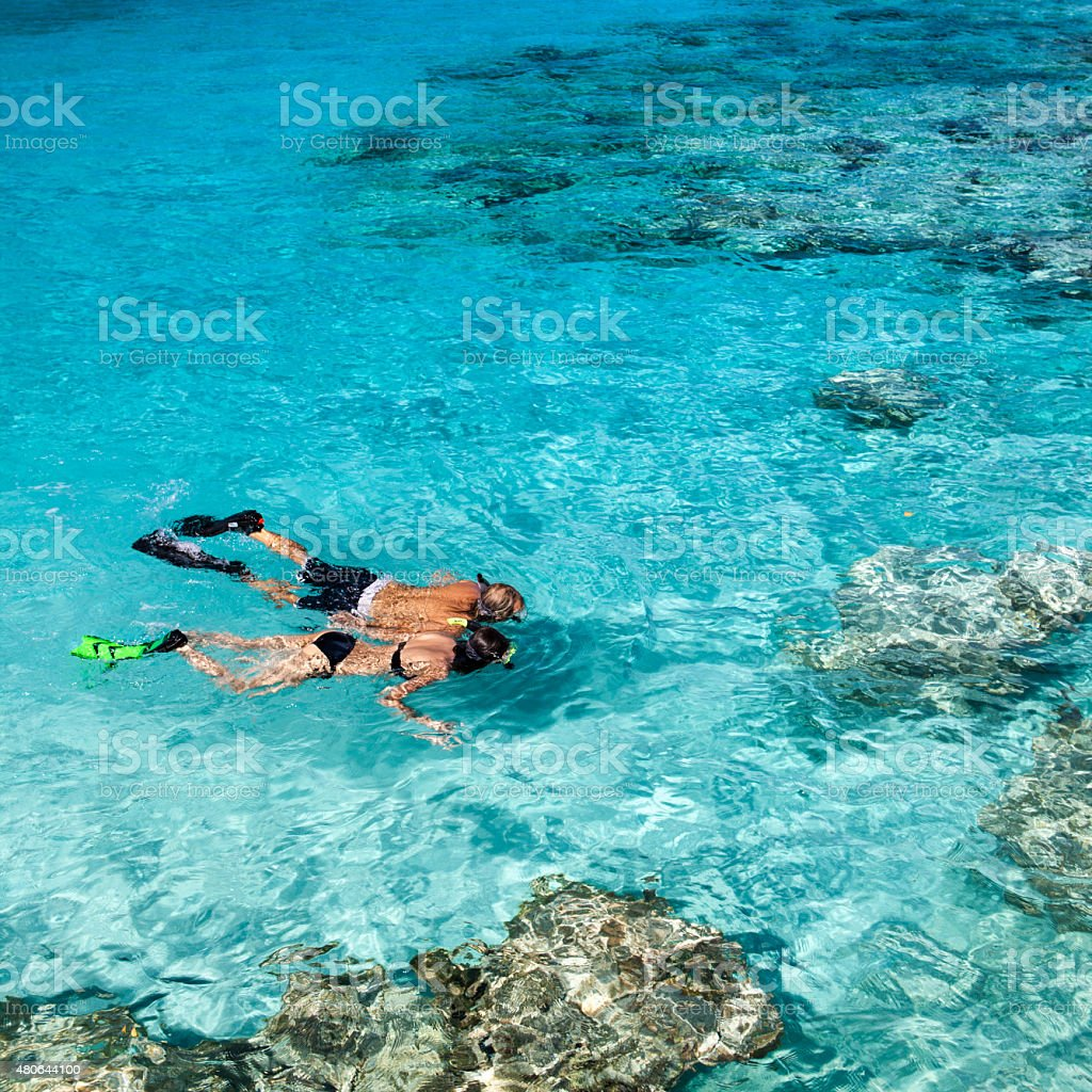 honeymoon couple holding hands while snorkeling in the Caribbean stock photo