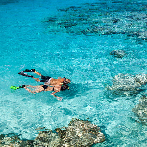 honeymoon couple holding hands while snorkeling in the Caribbean honeymoon couple holding hands while snorkeling in the Caribbean crystal clear waters snorkel stock pictures, royalty-free photos & images