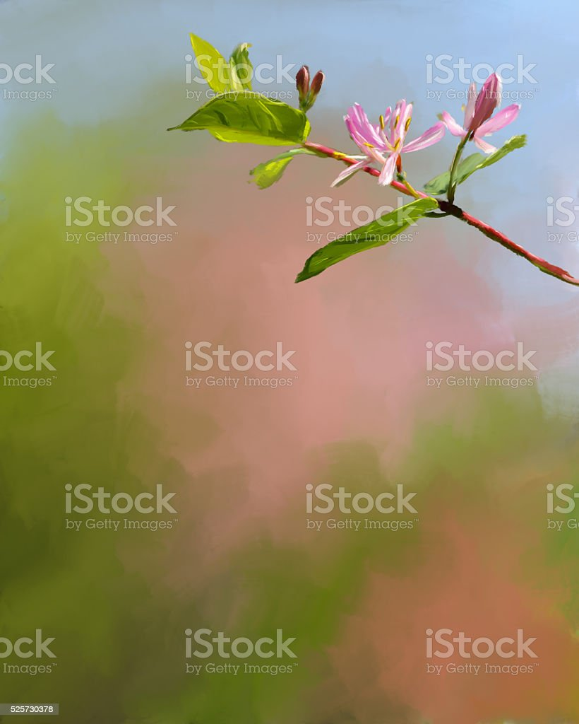 Honeysuckle Blooms with pastel background stock photo