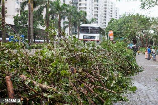 istock Hong Kong after typhoon 458963513