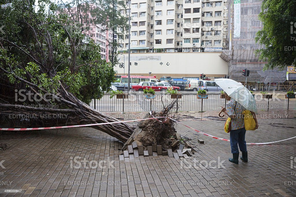 Hong Kong after typhoon stock photo