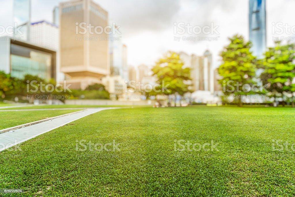 Hong Kong city skyline and green lawn at daytime stock photo