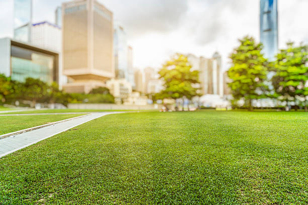 hong kong city skyline and green lawn at daytime - 타운 스퀘어 뉴스 사진 이미지