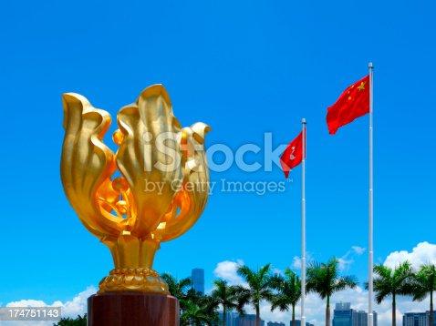 istock Hong Kong Golden Bauhinia Flower Square 174751143
