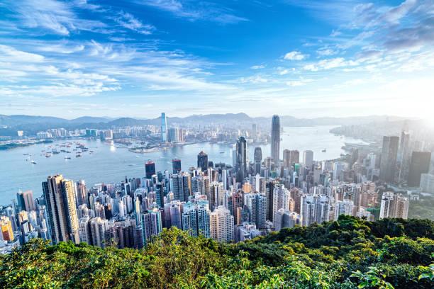 skyline de hong kong al amanecer - hong kong fotografías e imágenes de stock