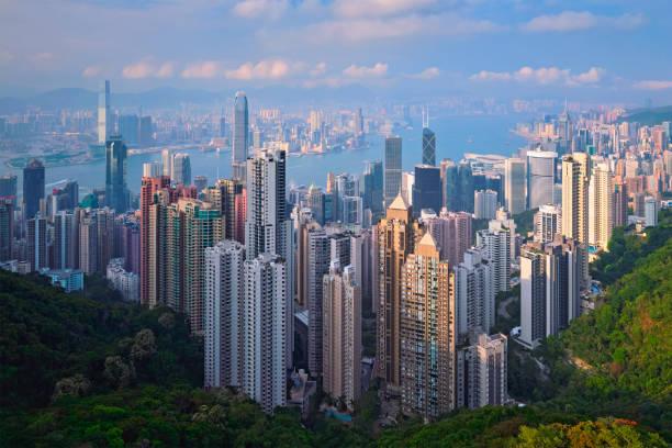 hong kong sky skrapor skyline stadsbilden utsikt - hongkong bildbanksfoton och bilder