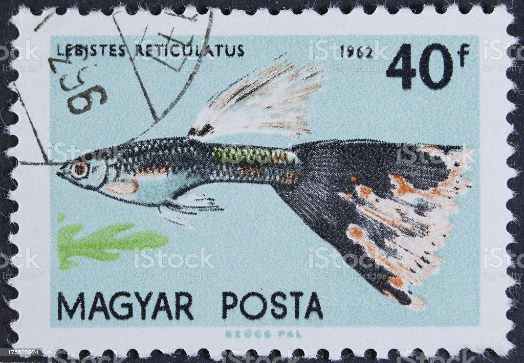 Hongarije stamp royalty-free stock photo