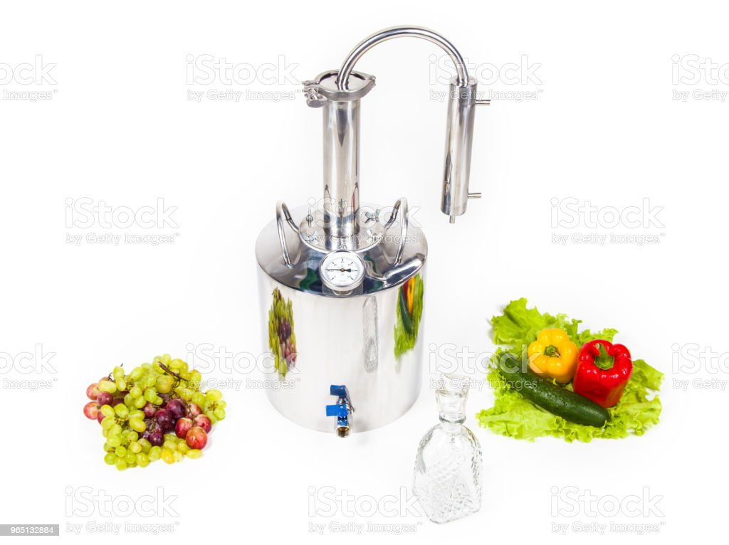 Hooch with fruits and vegetables royalty-free stock photo