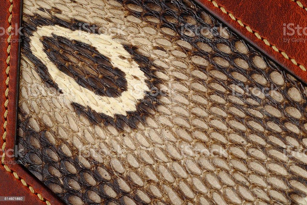 hood of a cobra and cobra skin  texture closeup, stock photo