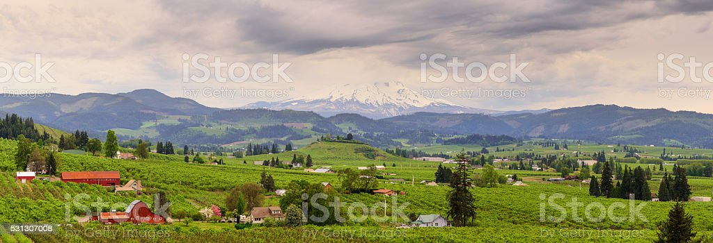 Hood River Valley stock photo