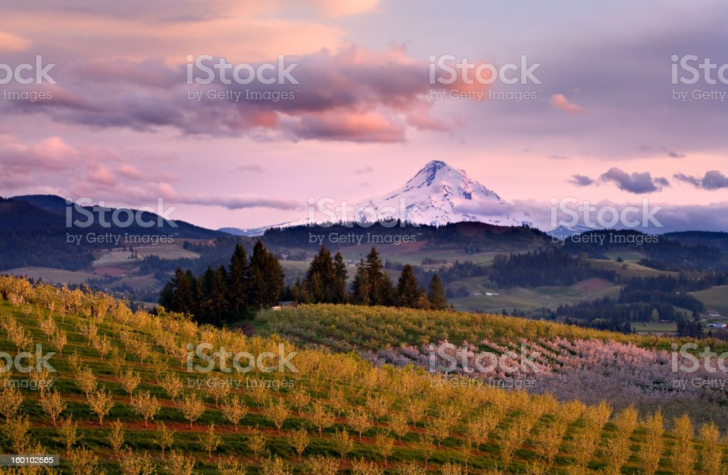 Hood River View Sunset stock photo