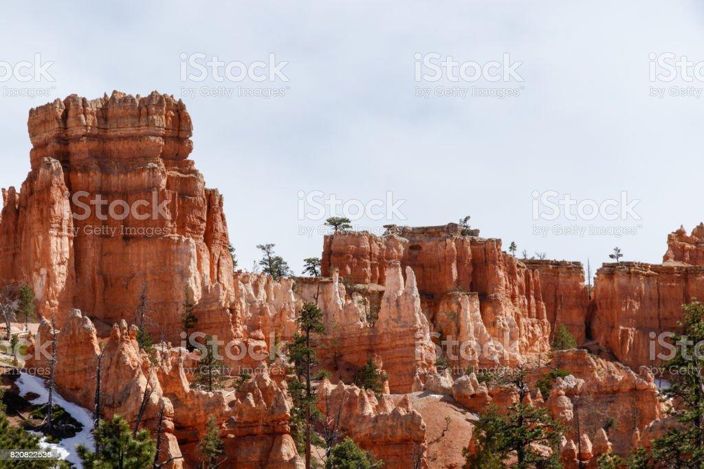 Hoodoos and trees in Bryce Canyon, Utah stock photo