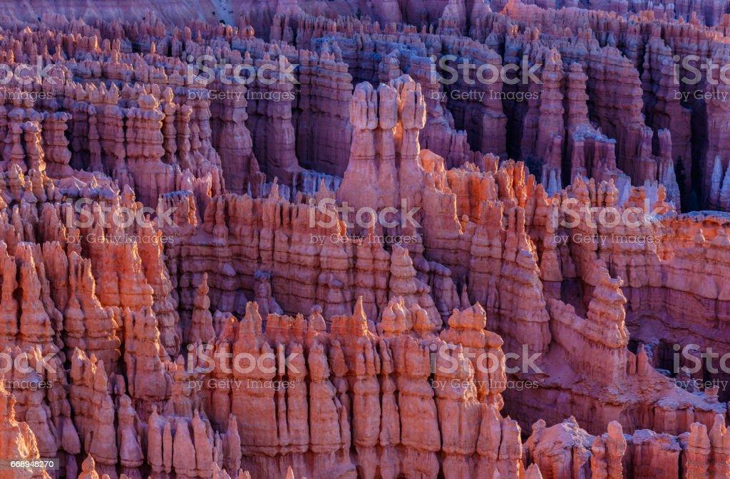 Hoodoos in Bryce Canyon, Utah at sunrise. stock photo