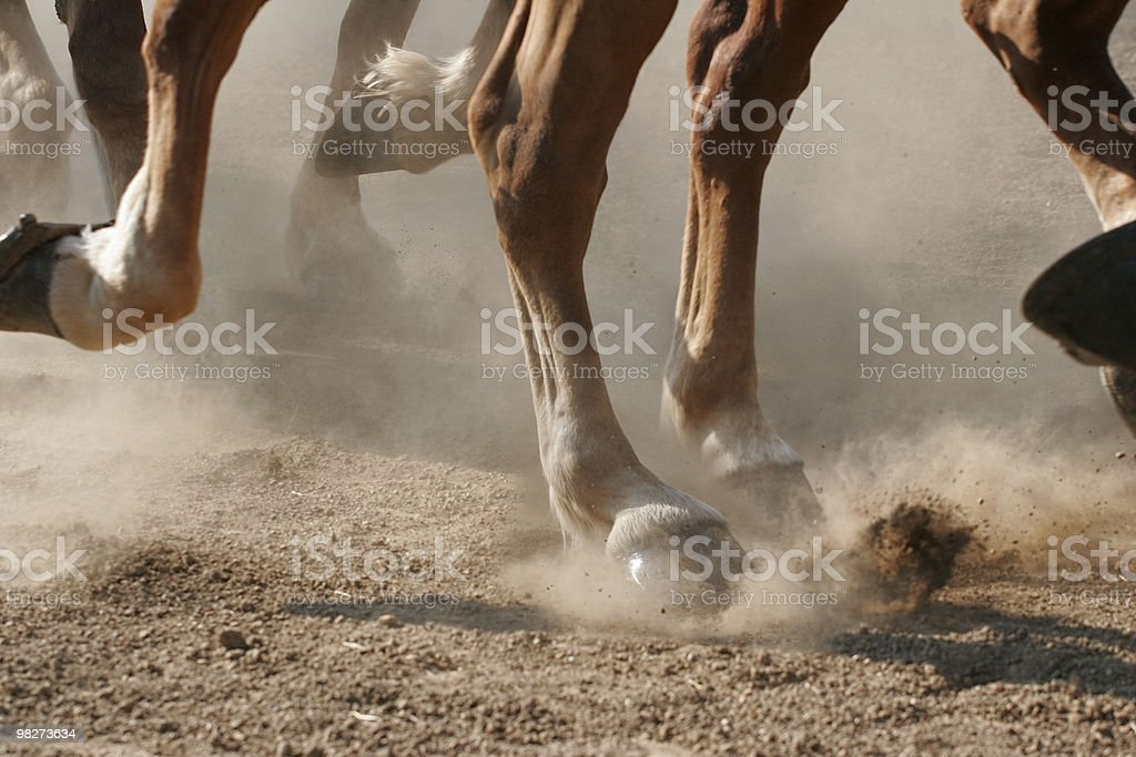 Hoof Dust royalty-free stock photo
