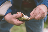 Catch and Release Fishing Derby: A Man releases a fish caught