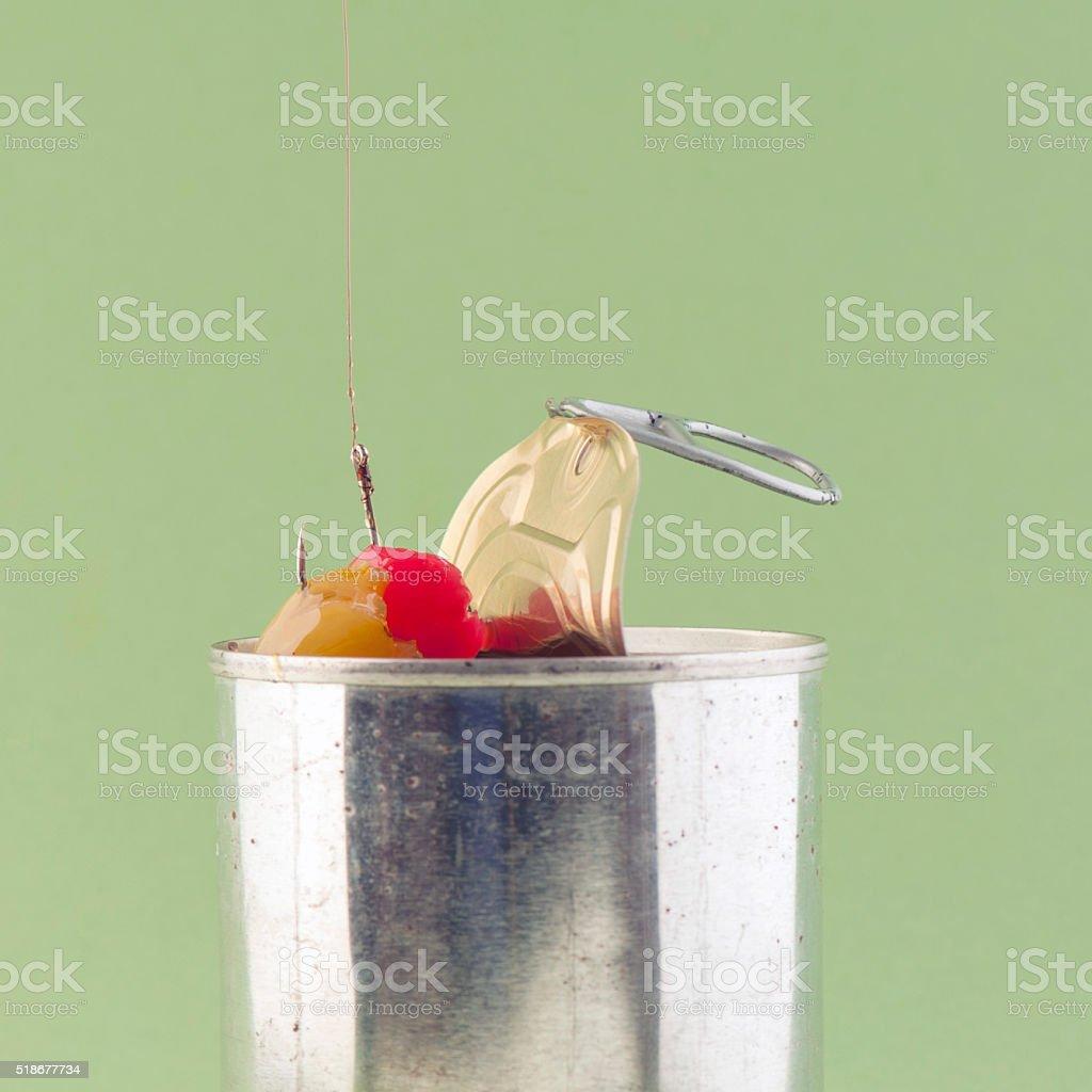 Hooked On Sugar; Canned Fruit stock photo