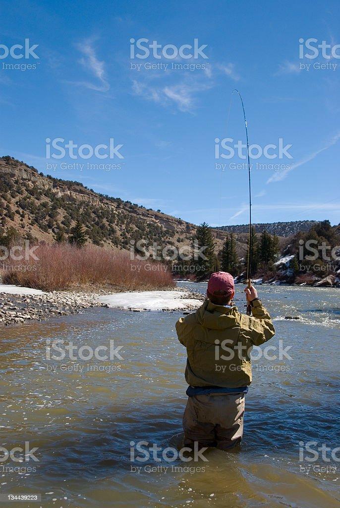 Hooking a fish royalty-free stock photo