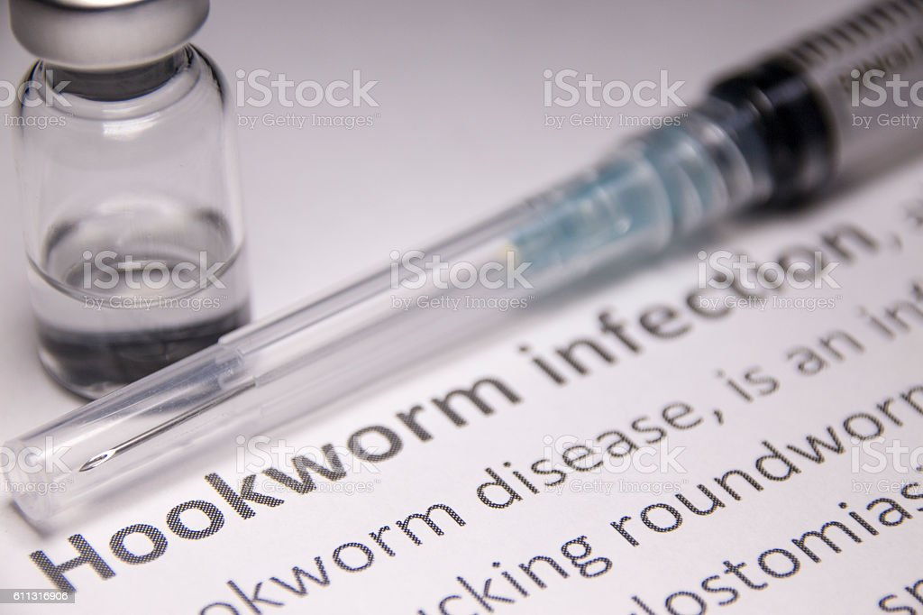 Hookworm Infection Stock Photo - Download Image Now - iStock