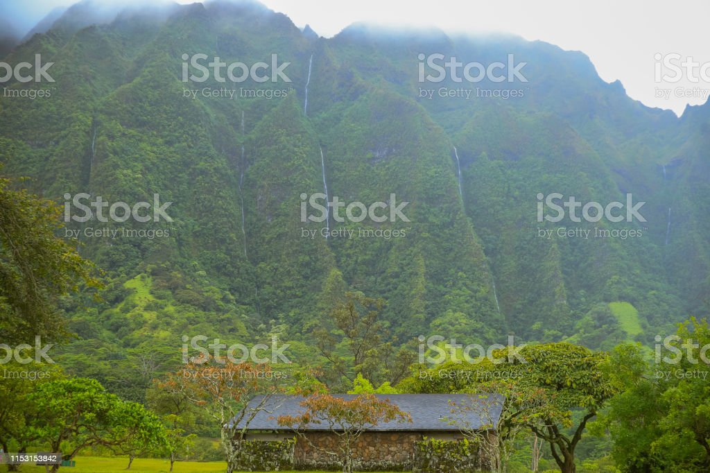 Hoomaluhia Botanical Garden Mountain View Grenn Tree Stock Photo