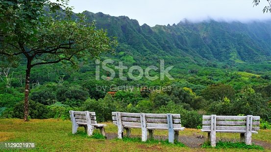 View of the entrance and Ko'olau Mountains as one drives through the Ho'omaluhia Botanical Park. Strolling or driving through these lush 400 acres in windward Oʻahu, you will truly agree that Hoʻomaluhia is rightfully named