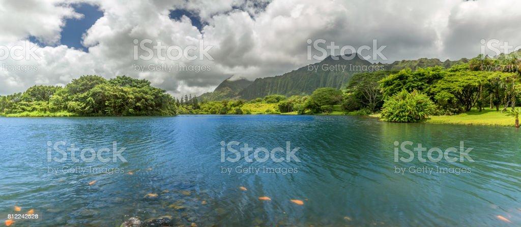 Hoomaluhia Lake Panorama stock photo