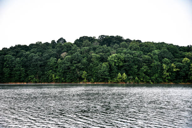 Hoosier National Forest in Indiana Lake in Hoosier National Forest in Indiana national forest stock pictures, royalty-free photos & images