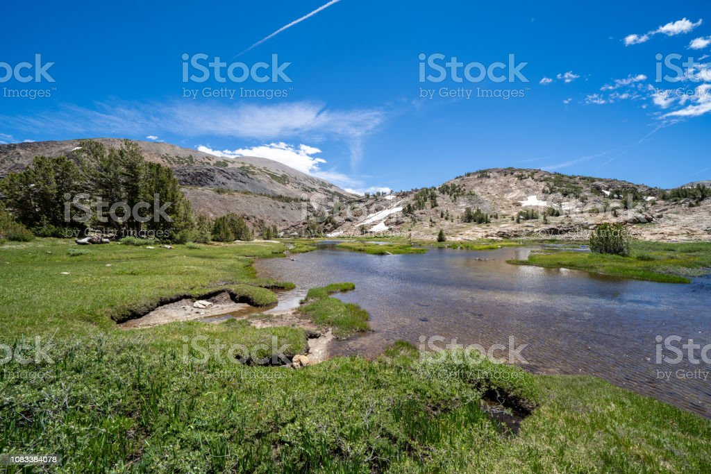 Hoover Wilderness Area Of California On A Sunny Summer Day