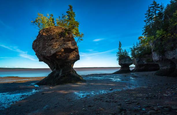 Hopewell Rocks bei Ebbe – Foto