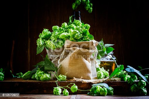 istock Hops in canvas bags 610570922