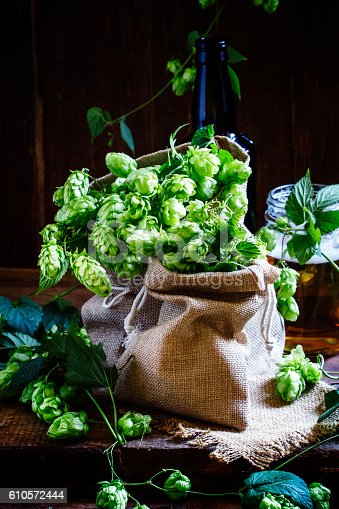 istock Hops in canvas bags 610572444