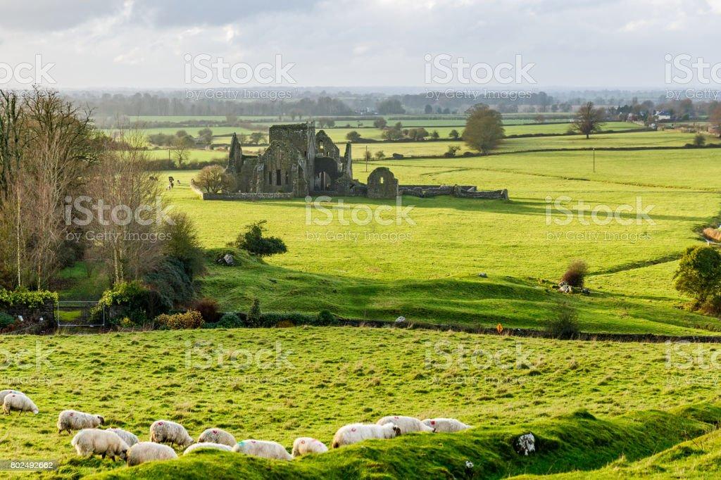 Hore Abbey in Cashel stock photo