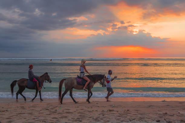 Horesriding on the tropical beach in the sunset picture id963890210?b=1&k=6&m=963890210&s=612x612&w=0&h=wbvim4hdxumpjfkoyx2 mkrtvhhcm7zao15rnwpecdm=
