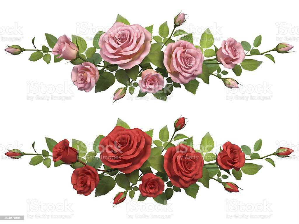 Royalty Free Rose Border Pictures Images And Stock Photos