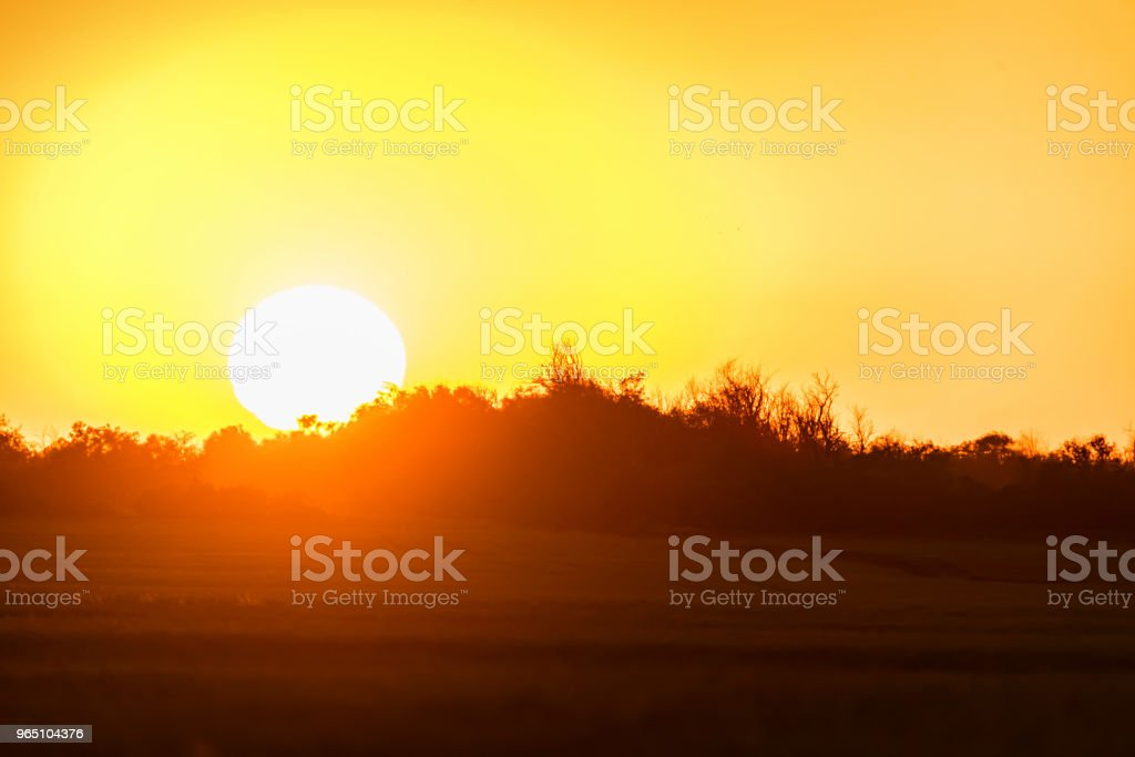 Horizon line of countryside with sun setting royalty-free stock photo