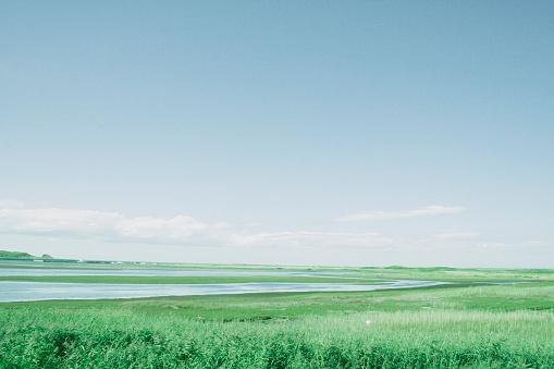 horizontal blue sky and grassland of Japan