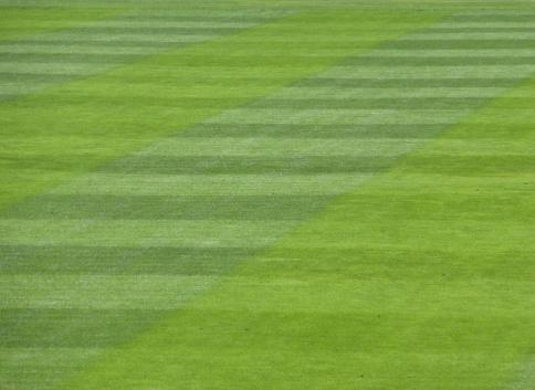 wasser dunnen streifen von gras
