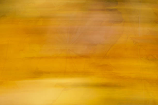 Horizontal fall background with delicate autumn leaves stock photo