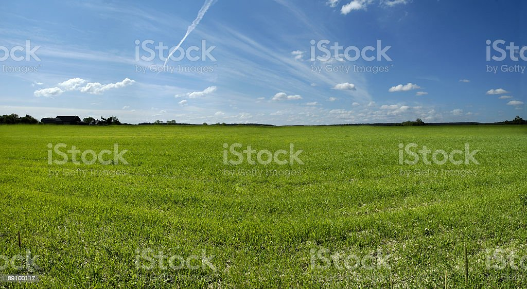 horizontal panorama of country summer view royalty-free stock photo
