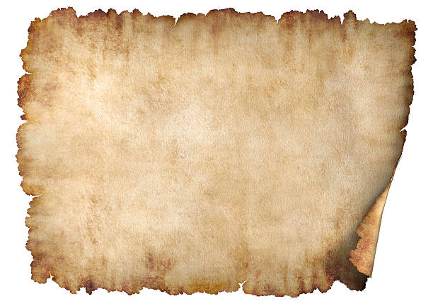 horizontal parchment paper texture background - scroll stock photos and pictures