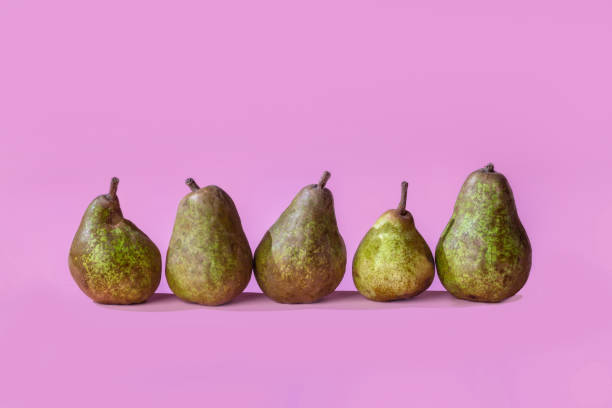 Horizontal row of organic pears on a pink background with copy space. Nutritious organically grown fruit. stock photo