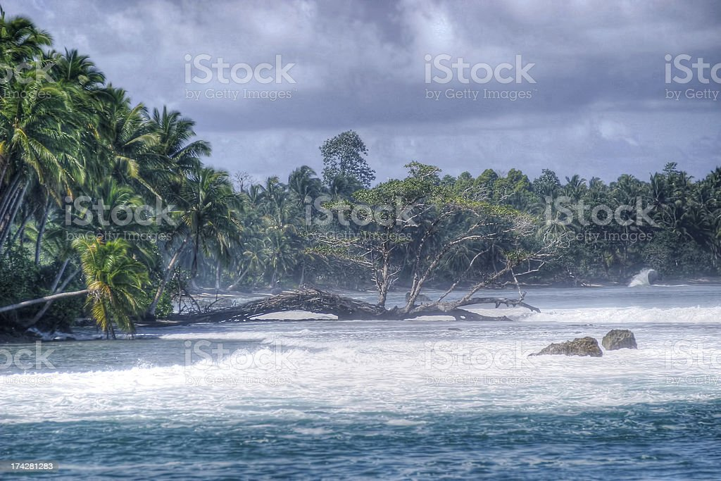 horizontal trees stock photo